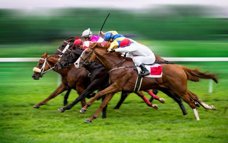 Horse Racing Tips